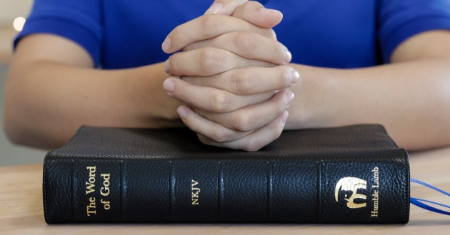 Catholic counseling online